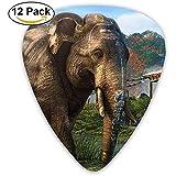 Elefantes de dibujos animados jugando con agua Guitar Pick 12Pack