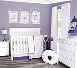 Pam Grace Creations 3 Piece Butterflies & Dragonflies Crib Bedding Set, Purple