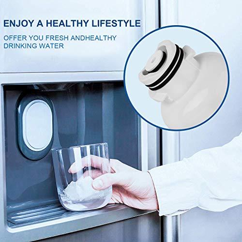 Samsung DA29-00020B, HAF-CIN/EXP Premium Refrigerator Water Filter (White, 2 pack)