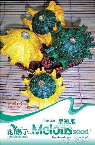 Livraison gratuite 3 Packs 24 Graines de citrouille Cucurbita Seeds B016
