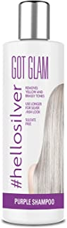 Silver Shampoo For Blonde and Highlighted Hair: Purple Pigment Shampoo Remove Brassiness For Silver and Ash-Grey Hair – Sulfate-Free – 8.45Fl.oz/250ml