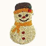 Mr. Bird Seed Frosty Snowman