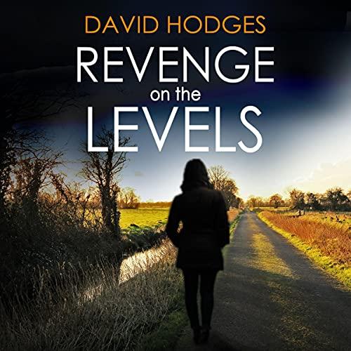 Revenge on the Levels cover art