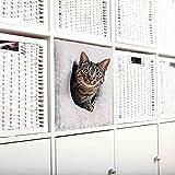 Trixie 44090 Kuschelhöhle für Regal, 33 × 33 × 37 cm, lichtgrau