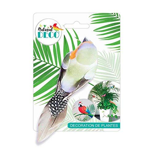 STC Déco Plantes – Petit Oiseau Vert CD3834