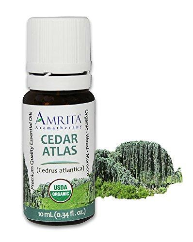 Top 10 Best cedrus atlantica essential oil Reviews