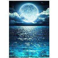 ダイヤモンド5DDIYダイヤモンド絵画海と月の風景ダイヤモンド刺繡キットピース象眼細工の家の装飾40x53cm