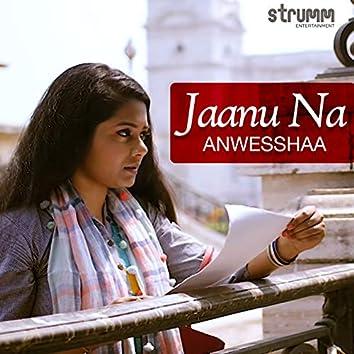 Jaanu Na - Single