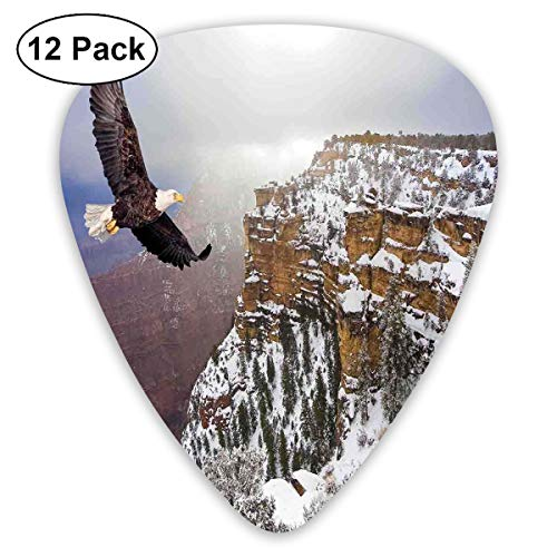 Guitar Picks12pcs Plectrum (0.46mm-0.96mm), Aerial View Of Bald Eagle Flying In Snowy Grand Canyon Rocky Arizona USA,For Your Guitar or Ukulele