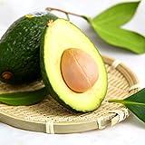 10 pezzi di avocado semi verde frutto molto delicious persea americana mill pera seed facile da coltivare, semi della frutta per impianto casa giardino