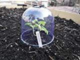 12-Pack! GrowAway Small Reusable Plastic Mini Greenhouse, Garden Cloche Dome, Plant Covers Frost Guard Freeze Protection for Plants Outdoors, Garden Tools, Garden Accessories - 7.87' Diam. x 6.69' H