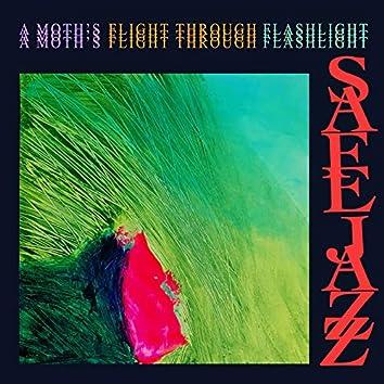 A Moth's Flight through Flashlight