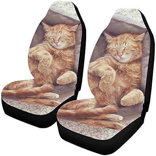 Fall Ing Autostoelhoezen, voorstoel, Ginger Cat slaapbank, stoelbeschermer, beschermhoezen, autobeschermers, voor de meeste auto's