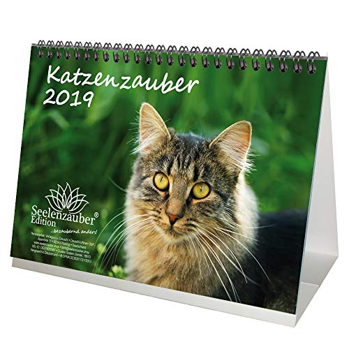 Katzenzauber · DIN A5 · Premium Tischkalender/Kalender 2019 · Katzen · Haustier · Stubentiger · Katzenbaby · Tier · Edition Seelenzauber