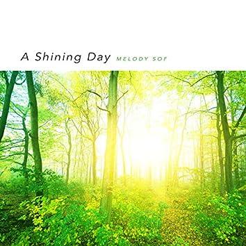 빛나는 하루