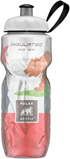 Polar Bottle 24oz Insulated State Flag