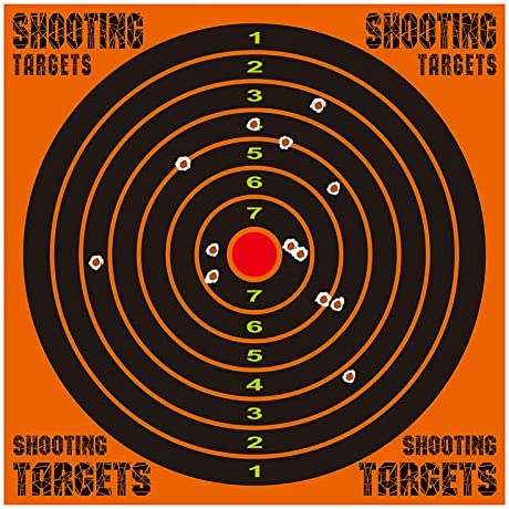Top 10 Best hanging targets for shooting