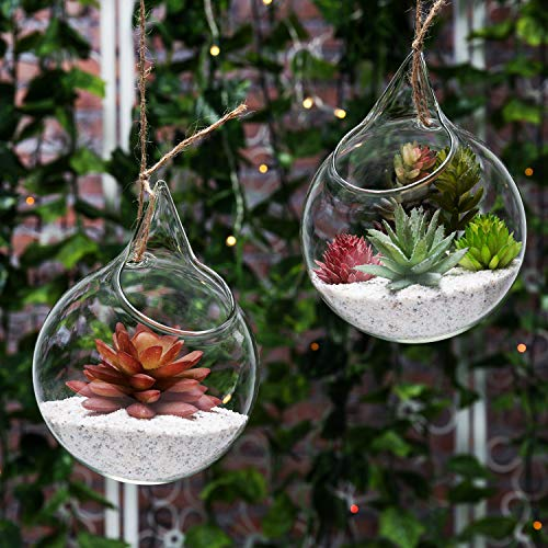 Set van 2 decoratieve transparante glazen bolletjes/opknoping luchtplant terrarium plant/kaarsenhouder - MyGift