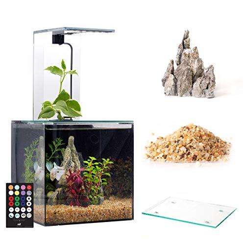 EcoQube Aquarium - Desktop Betta Fish Tank For Living Office And Home Décor