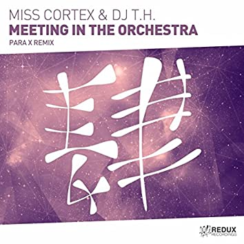 Meeting In The Orchestra (Para X Remix)