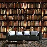 Wallpaper-CJW. Papel Pintado de Fotos Personalizado Europeo Retro 3D Murales Fondo Fondo Mural Librería de Pared Libros Bookshelf Fondo de Pantalla 3D-480 * 320cm