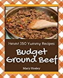 Hmm! 350 Yummy Budget Ground Beef Recipes: Save Your Cooking Moments with Yummy Budget Ground Beef Cookbook!