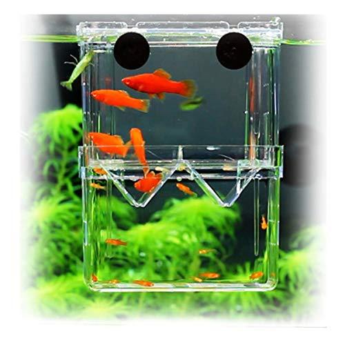 PANASONN 産卵ケース 隔離ケース 多機能 魚 繁殖隔離飼養ボックス メダカ 産卵 水槽 孵化 産卵箱 水族館アクセサリー 11*8*7cm(S サイズ)