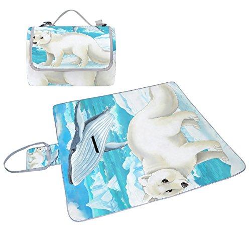 COOSUN Polar Fox und Wal Picknick Decke Tote Handlich Matte Mehltau resistent und wasserfest Camping Matte für Picknicks, Strände, Wandern, Reisen, Rving und Ausflüge