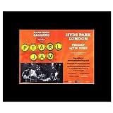 PEARL JAM London Hyde Park Juni 2010 Poster, Miniposter,