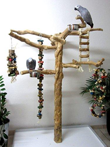 Kletterbaum für Vögel, Freisitz für Papageien, Papageienspielzeug, ORIGINAL Java Holz, Javastamm, Metallumrand,165 cm
