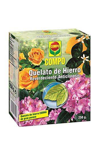 Compo 250 g Quelato, Reverdeciente anticlorosis, EDDHA 13% Hierro Soluble en Agua, Incluida Cuchara dosificadora, Negro