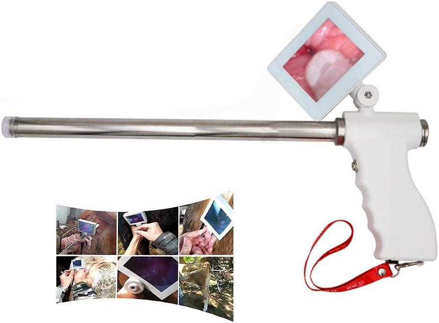 BJYX Equipo de Inseminación Visual Artificial para Ganado con Pantalla HD función de Calentamiento por Vibración Adecuada para Perros Cerdos Ovejas Vacas Caballos,Cows and Horses