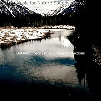 Music for Nature Sounds (Koto)