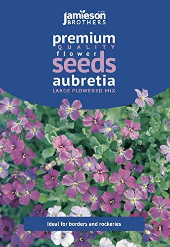 Jamieson Brothers Aubretia Large Flowered Mixed Flower Seeds