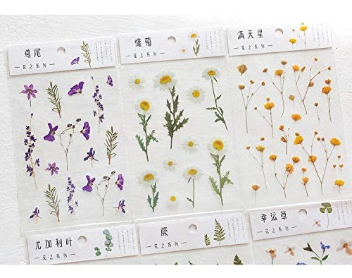 12 Designs Natural Daisy Clover Japanese Words Stickers Transparent PET Material Flowers Leaves Plants Deco Stickers
