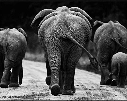 ZDBWJJ 3D-muurpapier, zwart, wit, Afrikaanse olifant, dier, abstract, kunst, fotobehang, woonkamer, 3d wallpaper 120 cm x 100 cm.