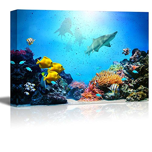 wall26 - Canvas Prints Wall Art - Underwater Scene. Coral Reef, Colorful Fish Groups, Sharks and Sunny Sky Shining Through Clean Ocean Water. High Resolution - 24' x 36'