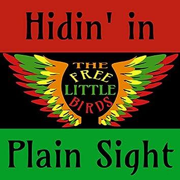 Hidin' in Plain Sight (Acoustic)