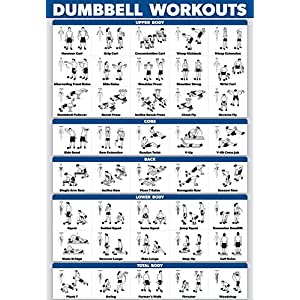 Palace Learning Dumbbell Workout Exercise Poster – Laminated – Free Weight Body Building Guide | Home Gym Chart | Double Sided – 18″ x 27″