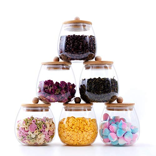 RORA 6 Piece Round Clear Glass Food Storage Jars with Airtight Bamboo Lids Kitchen Decorative Canister Set For Coffee, Flour, Tea, Sugar, Candy, Cookie, Spice and More (20 OZ)