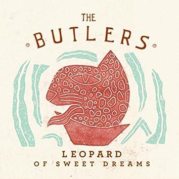 Leopard of Sweet Dreams