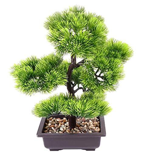 JTSYUXN - Bonsai in Green