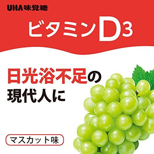 『UHAグミサプリ ビタミンD3 マスカット味 スタンドパウチ 40粒 20日分』の2枚目の画像