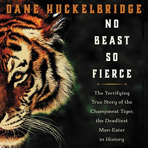 No Beast So Fierce audiobook cover art