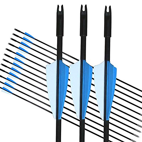GPP Archery Beginner's First Arrows (30' Fiberglass Target Archery Arrows) - 12 Pack