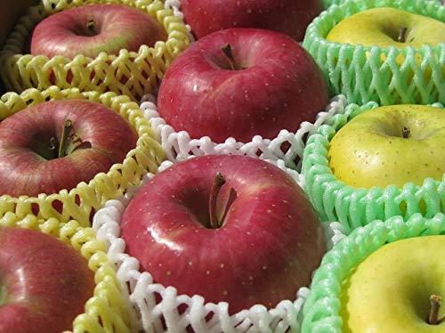 生産農家直送 信州の旬のりんご 訳あり お勧め詰め合わせ 自家用向き 約2.7〜3kg入り/箱 サンつがる さんさ シナノリップ 秋映 シナノスイートなど旬のりんごを詰め合わせします