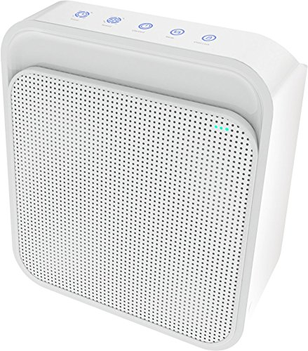 Express Panda Air Purifier, Triple-Stage Air Filter Cleaner with HEPA Filtering, Active Charcoal and Negative ION – Best Desktop Air Purifier for Home and Office Use by