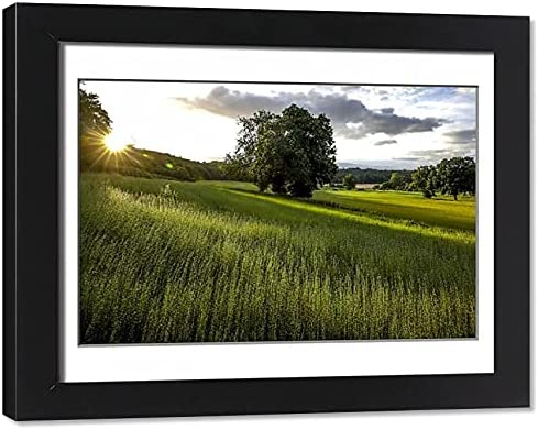 robertharding Sales results No. 1 Framed 14x11 Photo It is very popular of Field Eure Flax France in