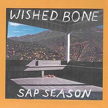 Sap Season
