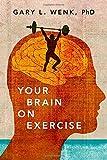 你的大脑的形象在锻炼
